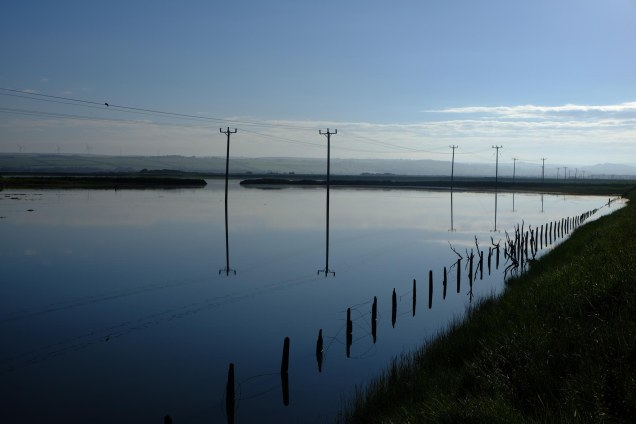 electricity poles, old fence poles flooding