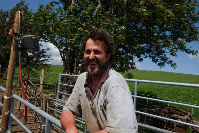 Sheep farmer, Radnor, Wales