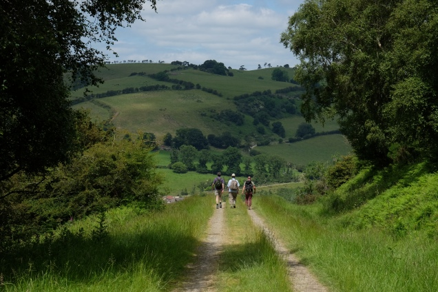 Offa's Dyke north of Knighton, three men walking, track, hills