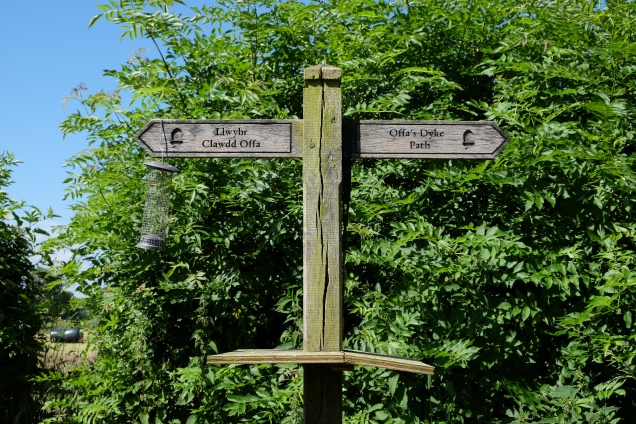 Wooden Offa's Dyke Sign post converted to Bird table