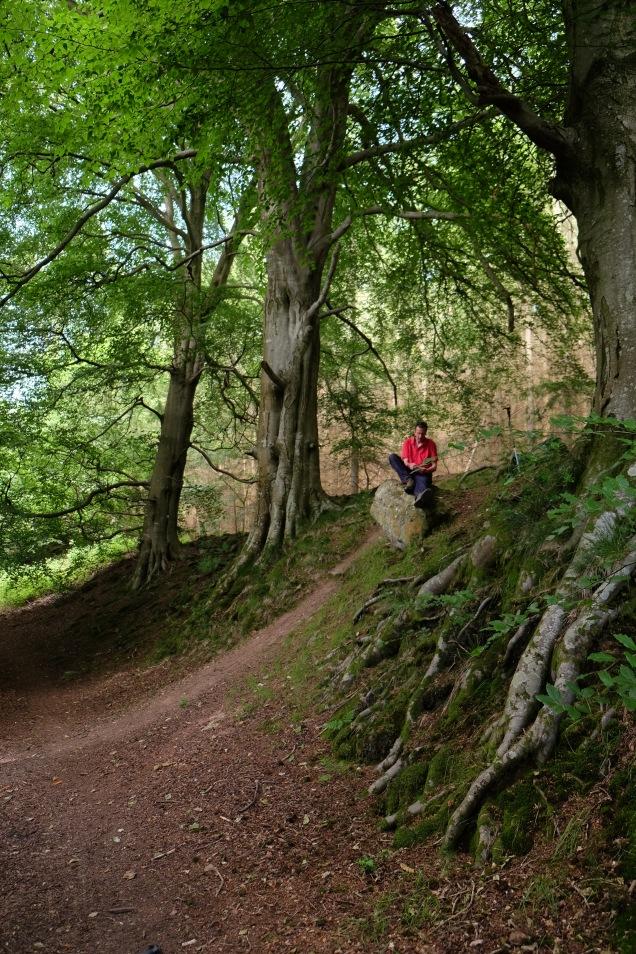 Man sitting down amoung beech trees Offa's Dyke