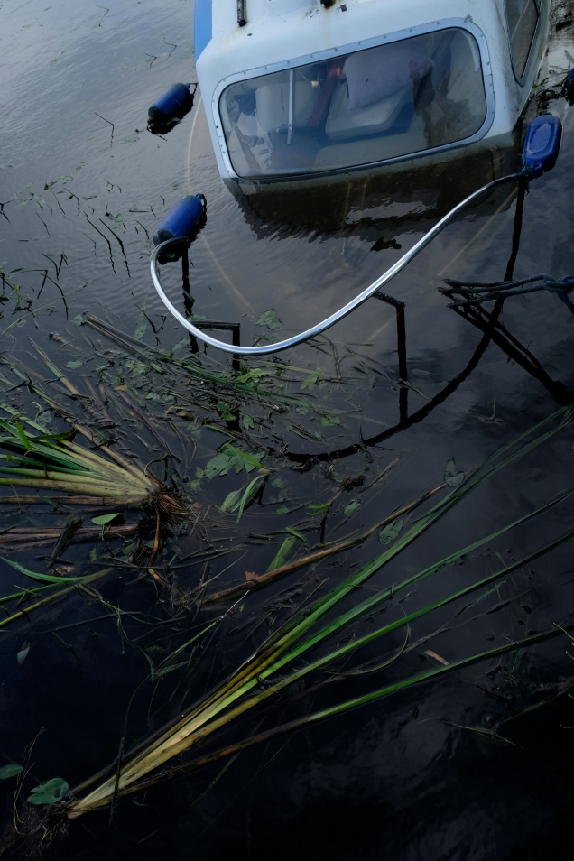 Sunken boat, rushes, water, Leeds Liverpool Canal
